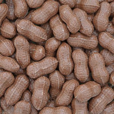 Chocolade doppinda's melk