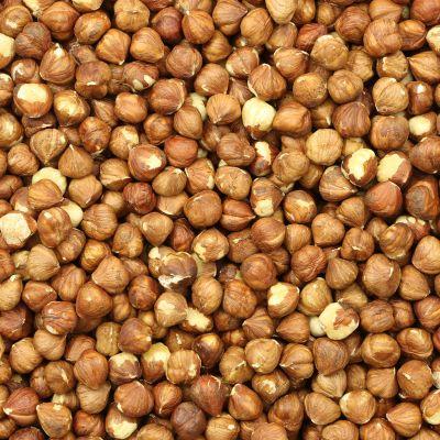 Bruine hazelnoten raw